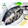 供应安徽三珍食品冷冻开背鮰鱼(清江鱼)烤鱼食材直销
